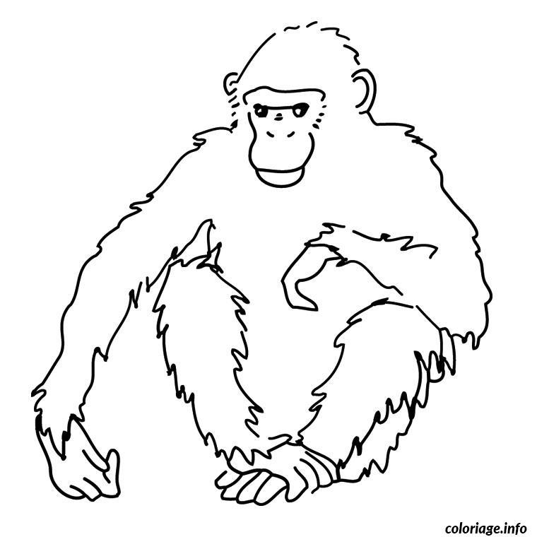 Coloriage singe afrique dessin - Coloriage afrique a imprimer ...