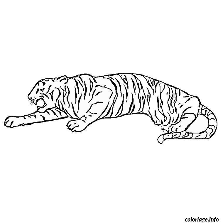 Coloriage tigre cirque - Image dessin tigre ...
