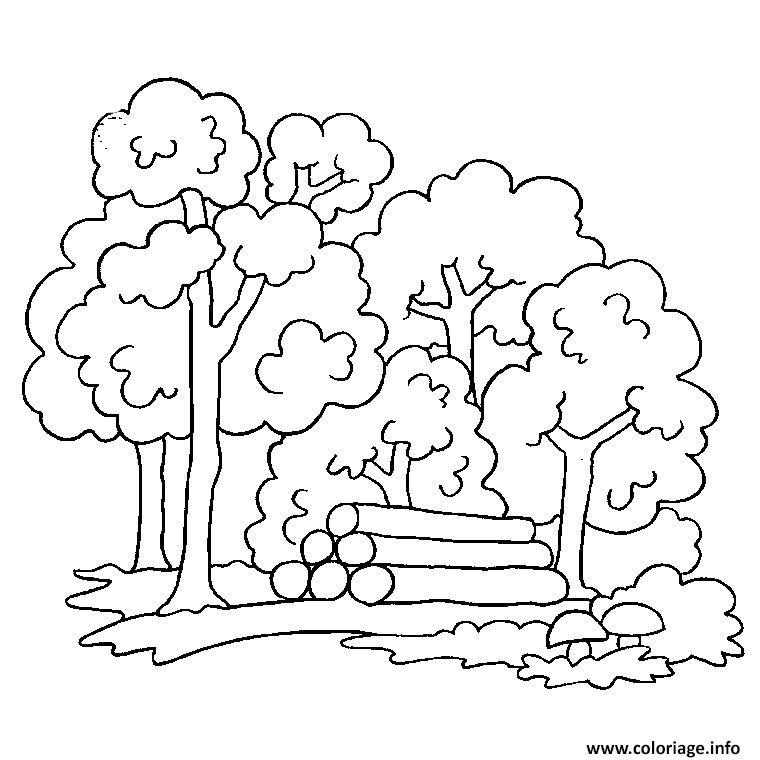 Coloriage arbre d automne dessin - Arbre d automne dessin ...