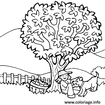 coloriage arbre dessin. Black Bedroom Furniture Sets. Home Design Ideas