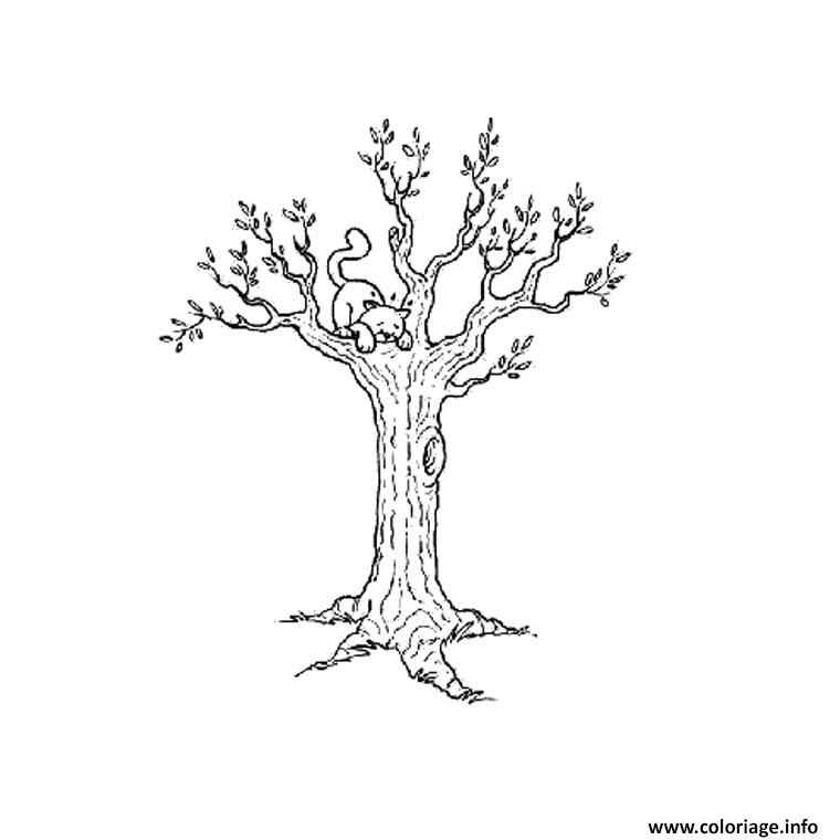 coloriage automne arbre dessin. Black Bedroom Furniture Sets. Home Design Ideas