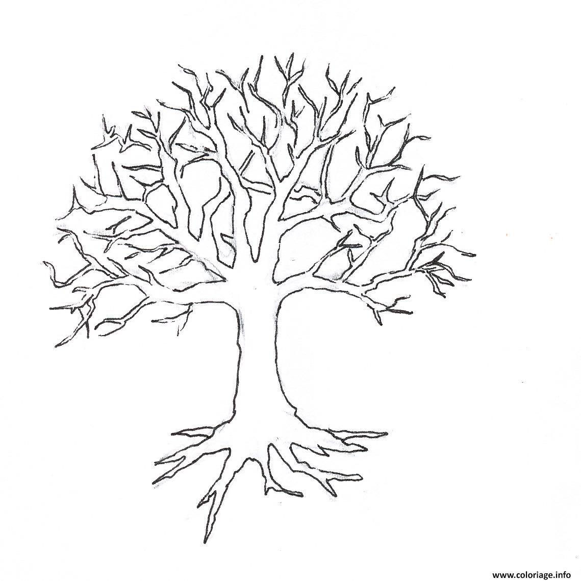 Coloriage arbre 148 - Coloriages arbres ...
