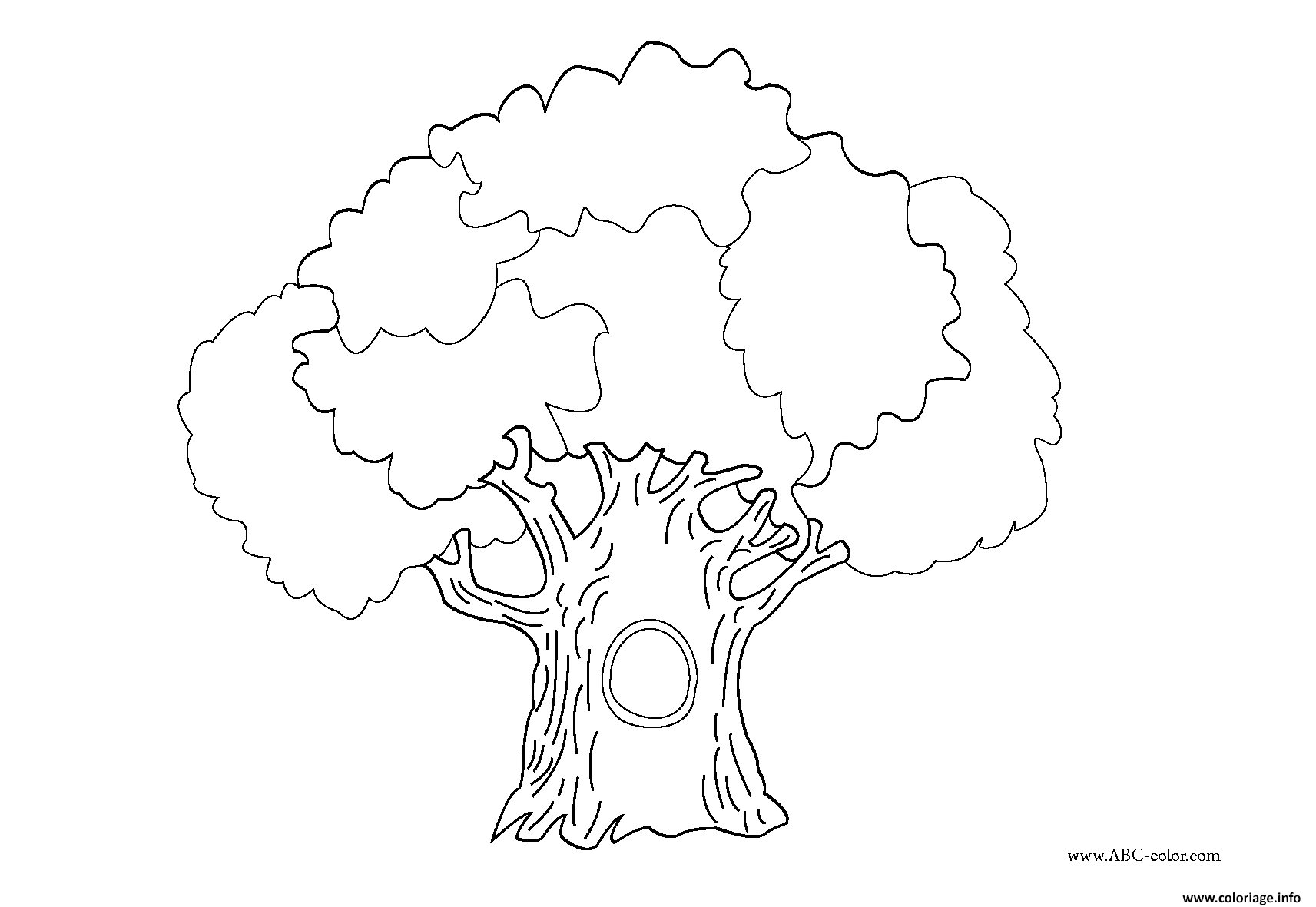 Coloriage arbre 99 dessin - Dessin arbre simple ...