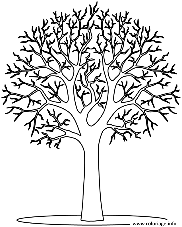 Coloriage arbre 13 dessin - Coloriages arbres ...
