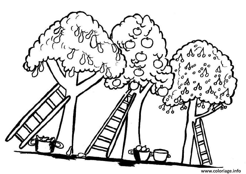 Coloriage arbre 98 dessin - Coloriages arbres ...