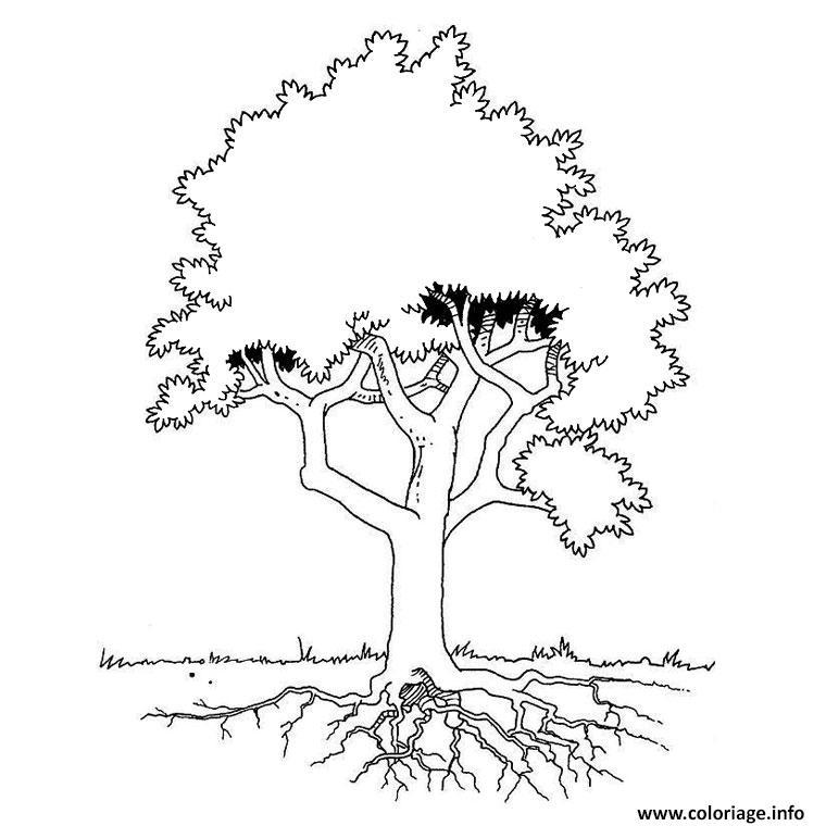 Coloriage un arbre - JeColorie.com