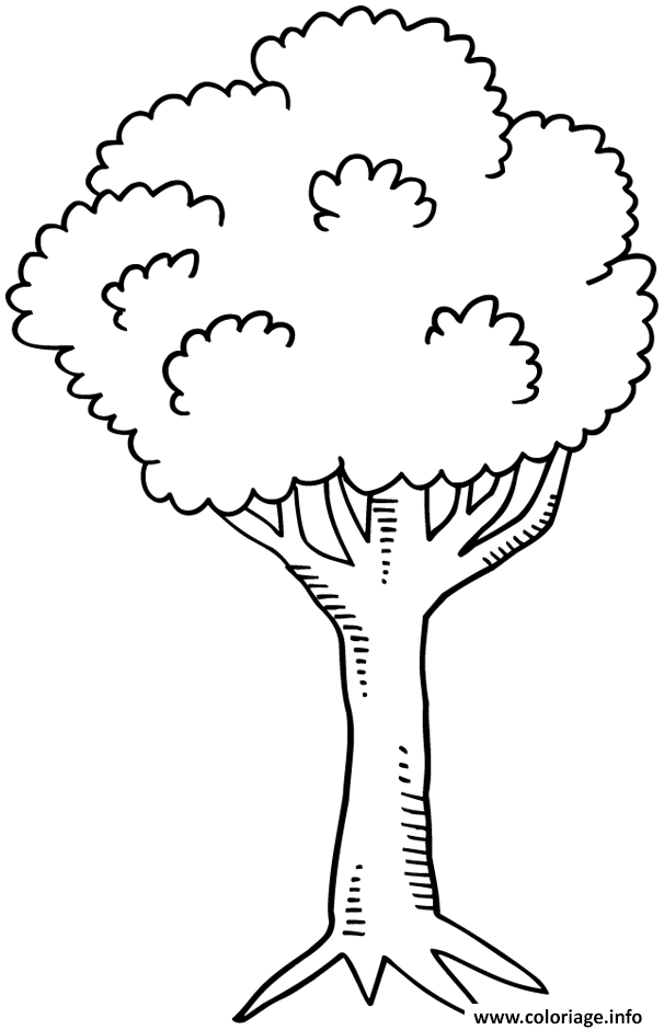 Coloriage arbre 25 dessin - Coloriages arbres ...