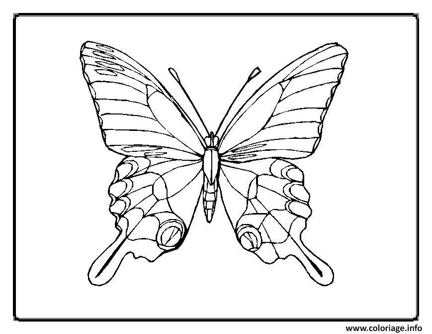 Coloriage papillon 39 dessin - Papillon dessin a imprimer ...