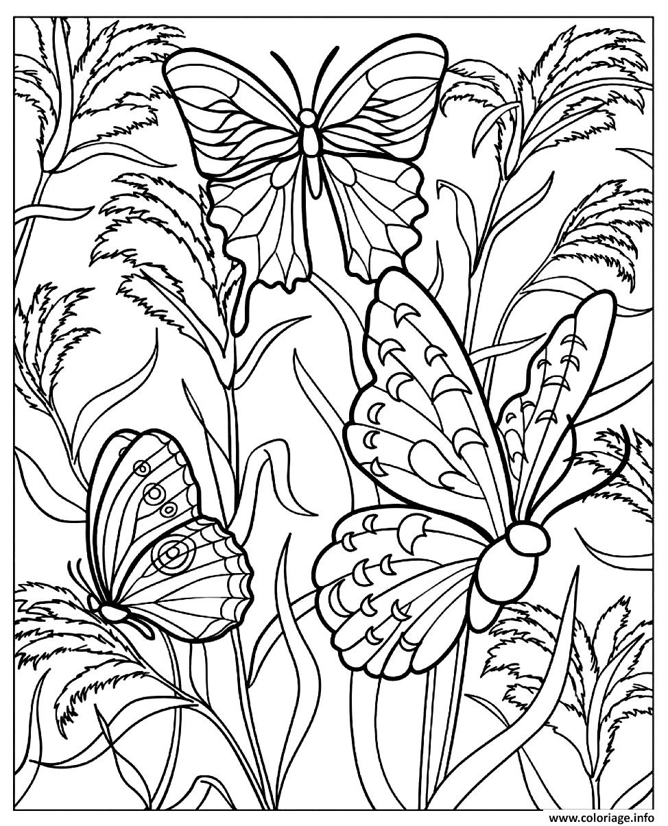 coloriage difficile papillons dessin