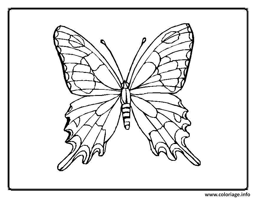 Coloriage papillon 33 - Dessiner un papillon ...