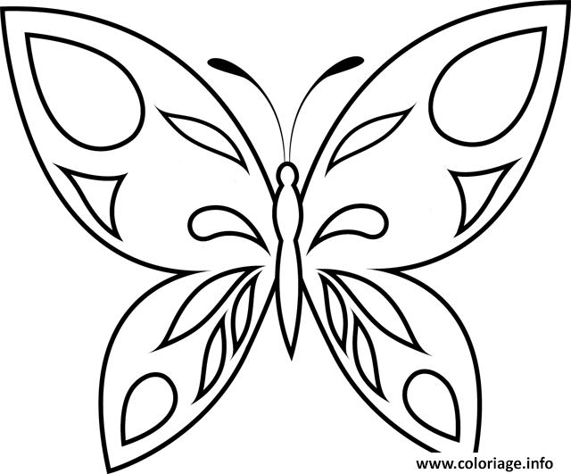Coloriage papillon 47 - Coloriage de papillon ...