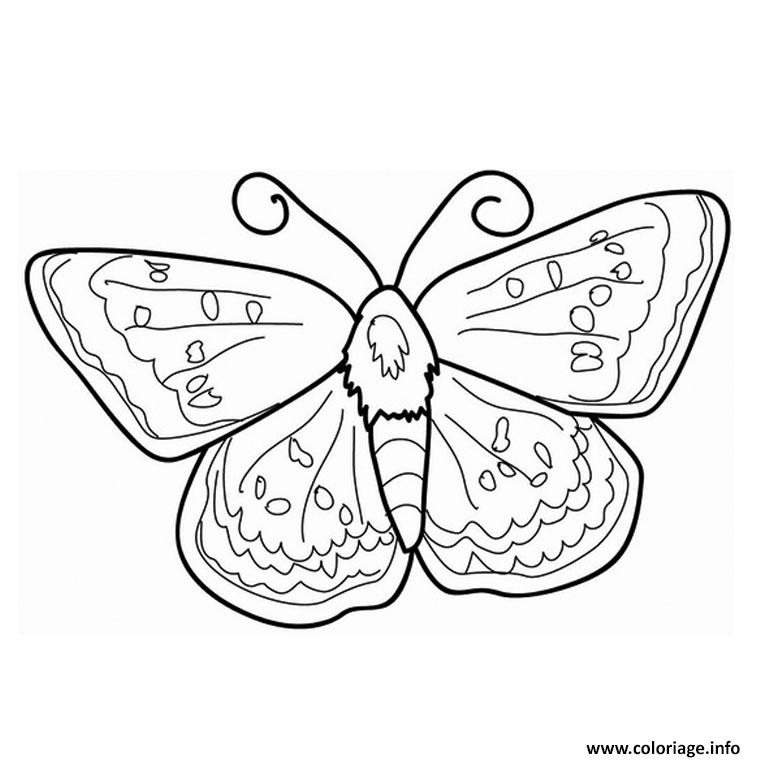 Coloriage papillon pet shop dessin - Papillon imprimer ...