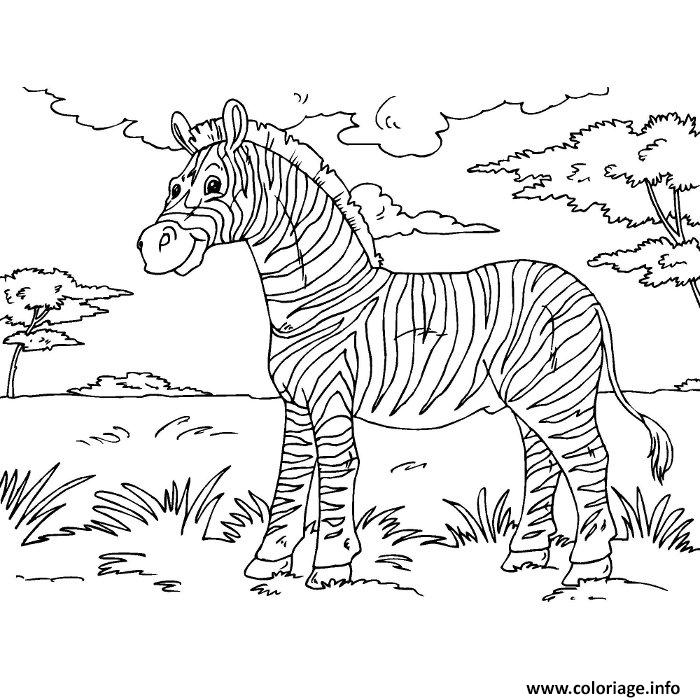 Coloriage Zebre Savane Dessin