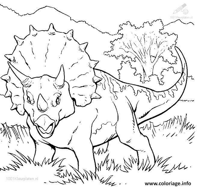 Coloriage Dinosaure 115 Jecolorie Com