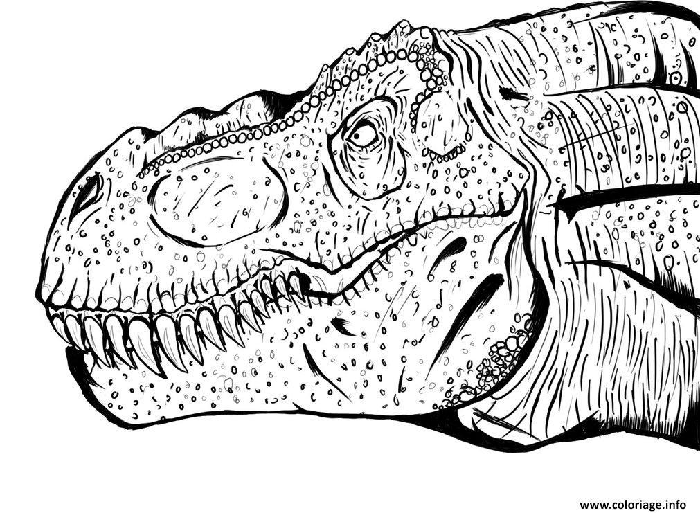 Coloriage Dinosaure Jurassic Park Gratuit A Imprimer.Dessin A Imprimer Jurassic World