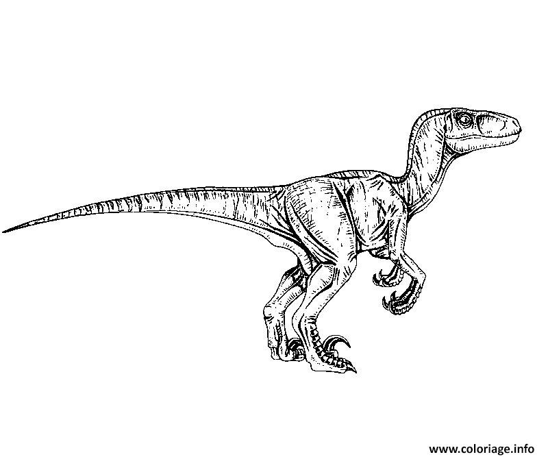 Jurassic World Coloring Pages Pdf : Coloriage jurassic world raptor dessin