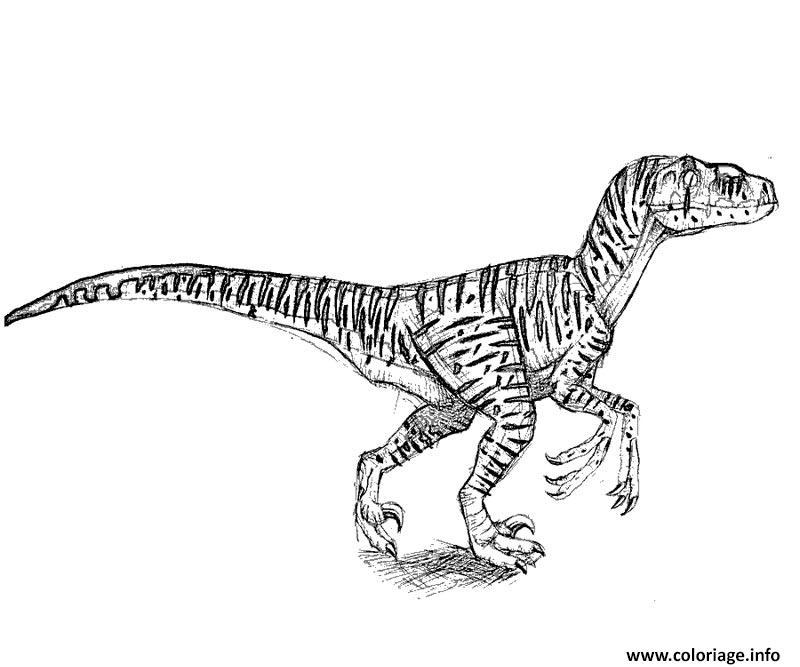 Kleurplaat Jurassic World Indominus Rex Coloriage Trex Jurassic Park Dinosaure Dessin