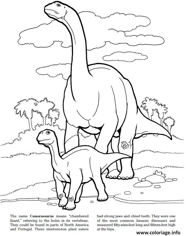 Coloriage Camarasaurus Jurassic Park Dessin