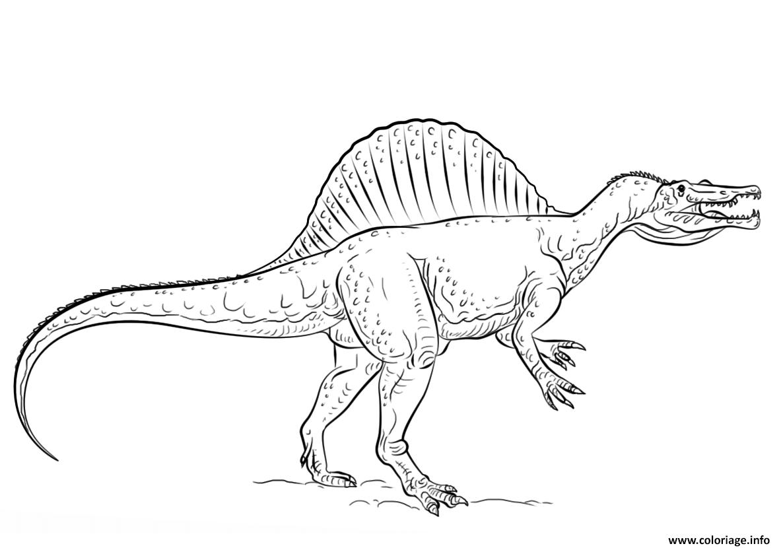 Coloriage spinosaurus - Dessin de tyrannosaure ...