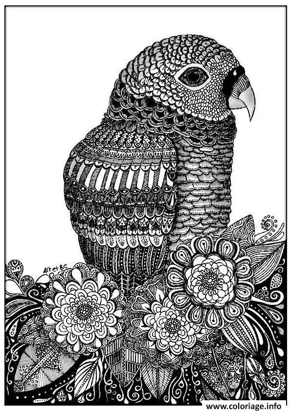 Coloriage adulte zentangle oiseau sabrina dessin - Dessin a imprimer oiseau ...