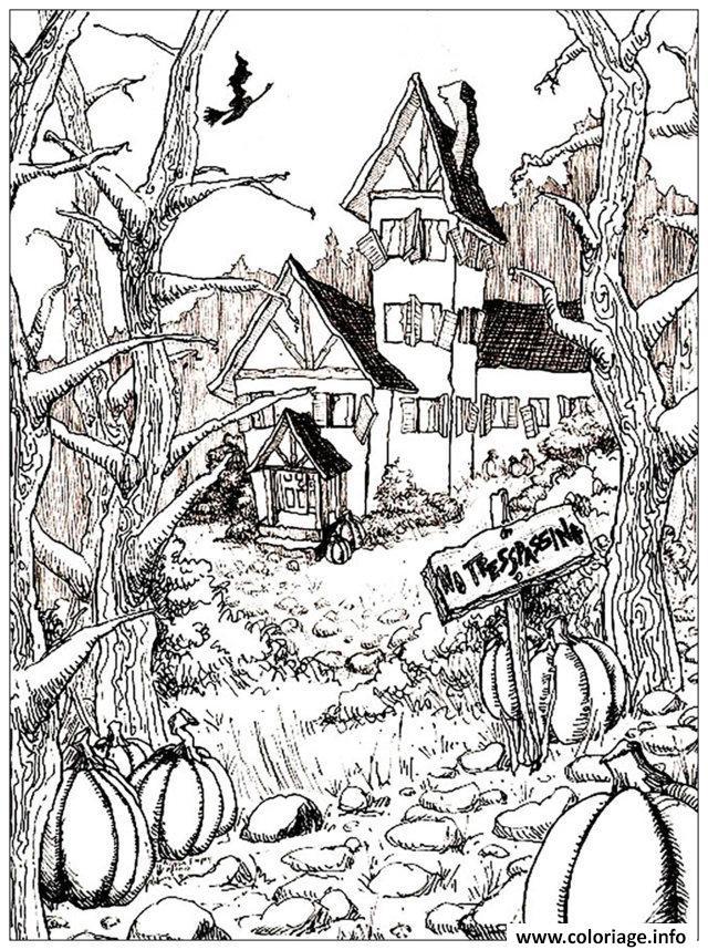 Dessin halloween adulte maison citrouilles Coloriage Gratuit à Imprimer