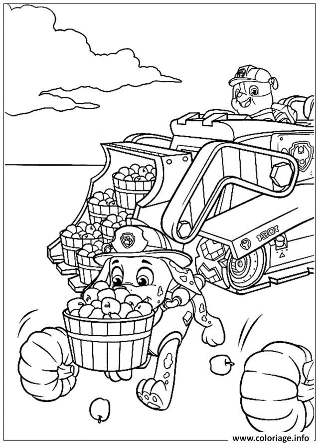 pat patrouille la recolte est bonne coloriage dessin