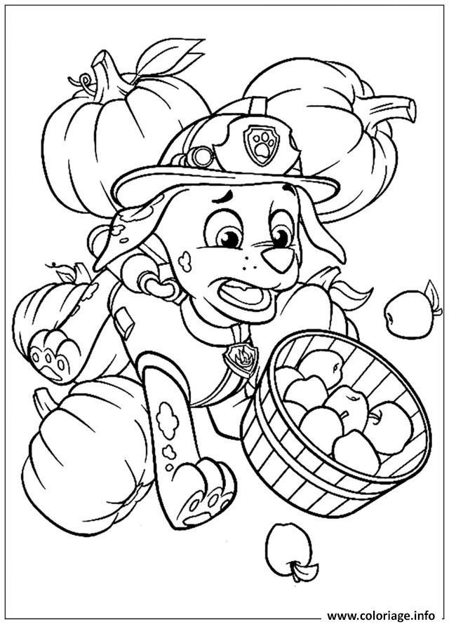 Coloriage fait tomber les pommes pat patrouille aille - Dessin pomme a colorier ...