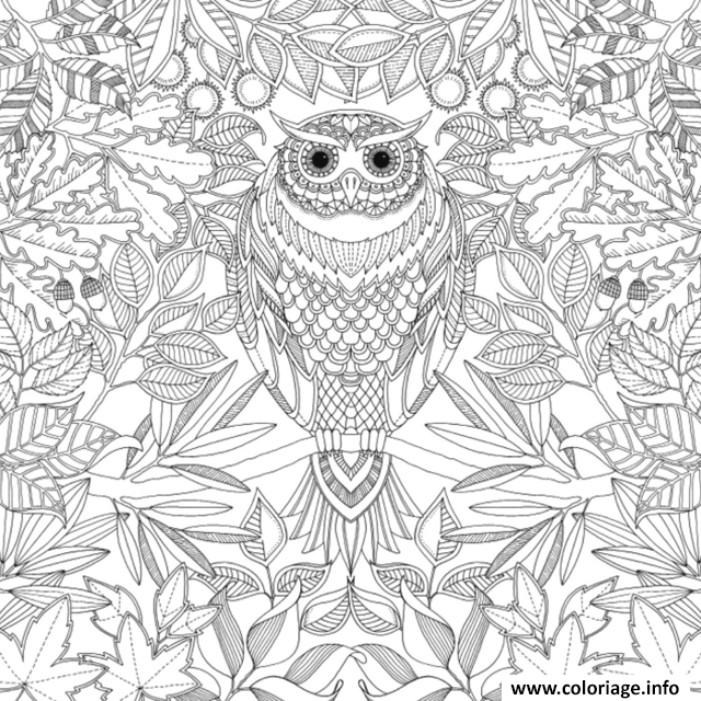 Coloriage anti stress animaux 2 - Dessins anti stress ...