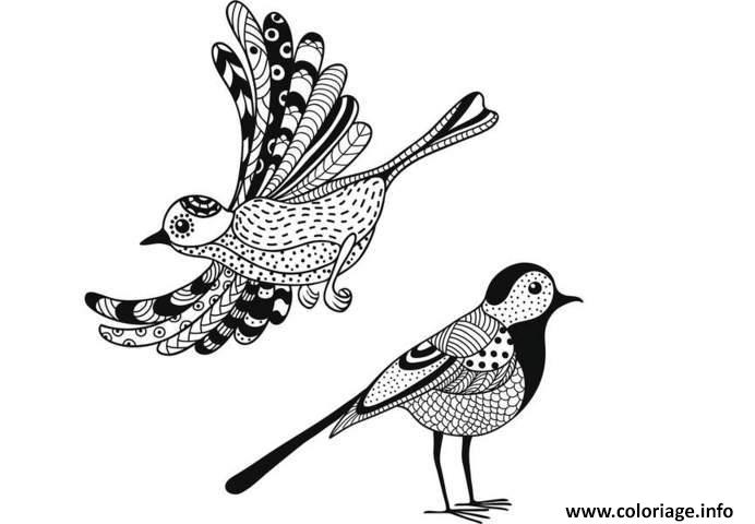 Coloriage anti stress animaux oiseaux dessin - Chat a colorier adulte ...