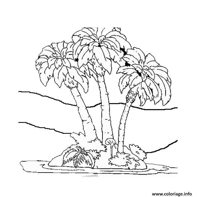Coloriage palmier 7 - Dessin de palmier ...
