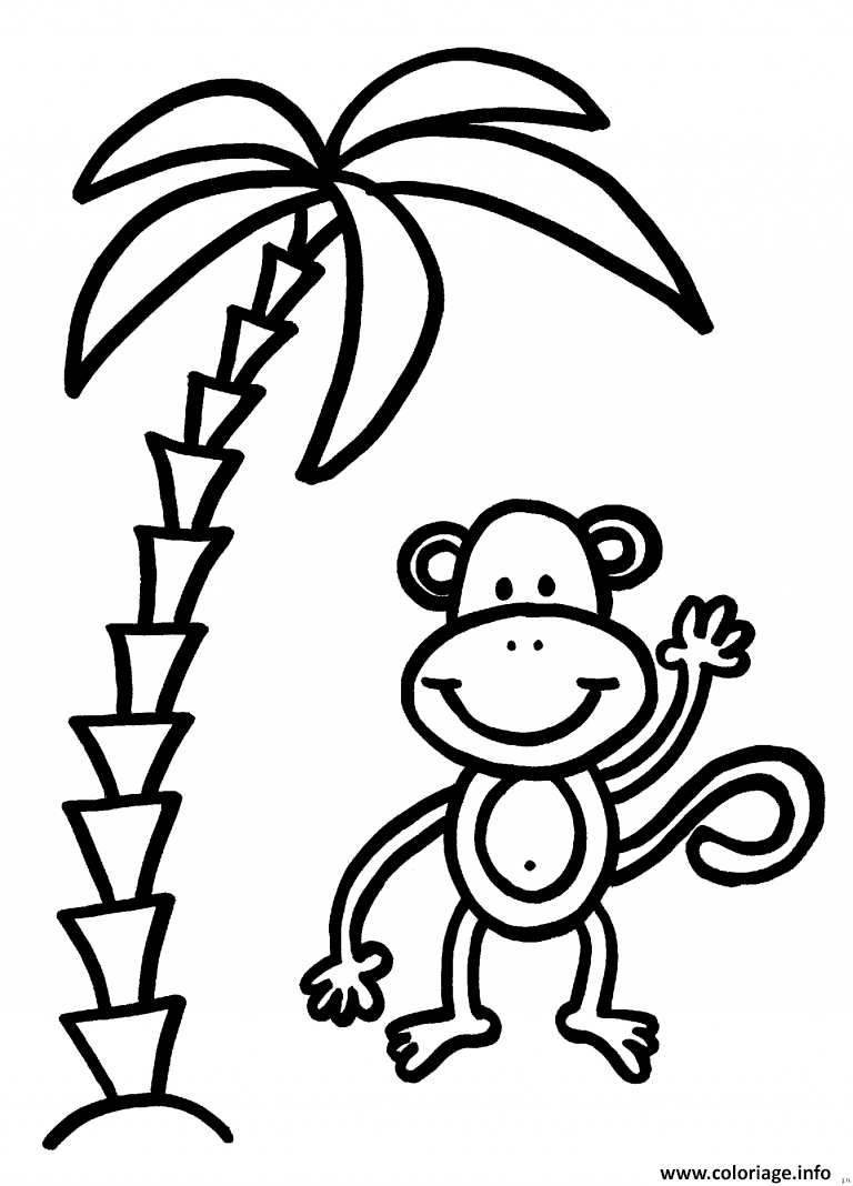 Coloriage palmier avec singe - Singe a dessiner ...