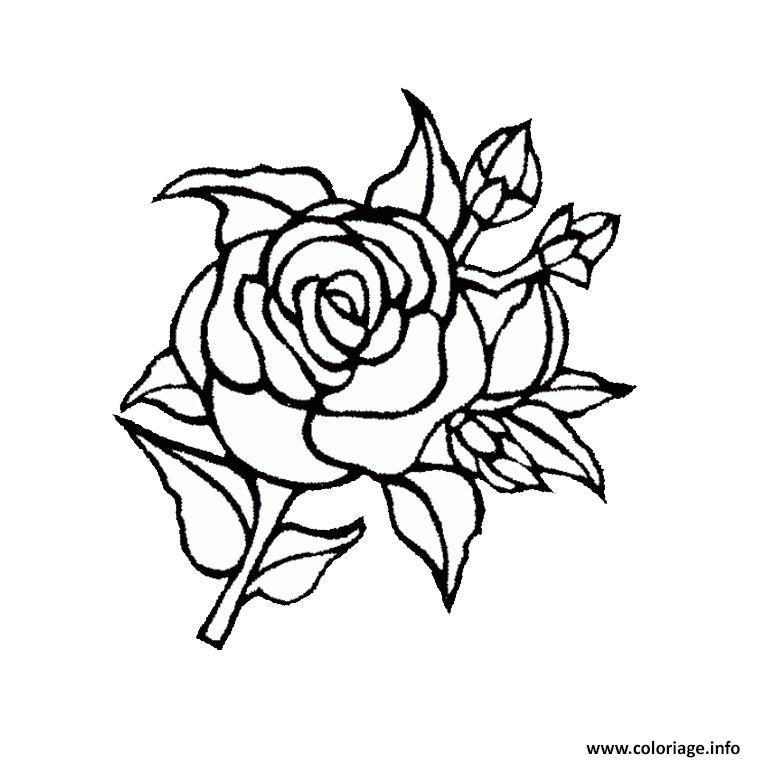 Coloriage rose fleur dessin - Fleur rose dessin ...