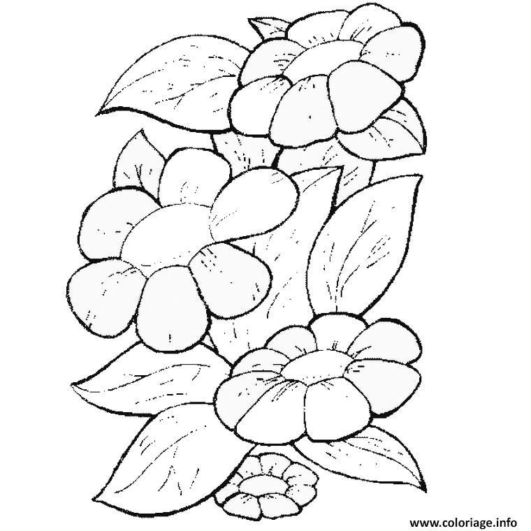 Coloriage une fleur dessin - Fleur en dessin ...