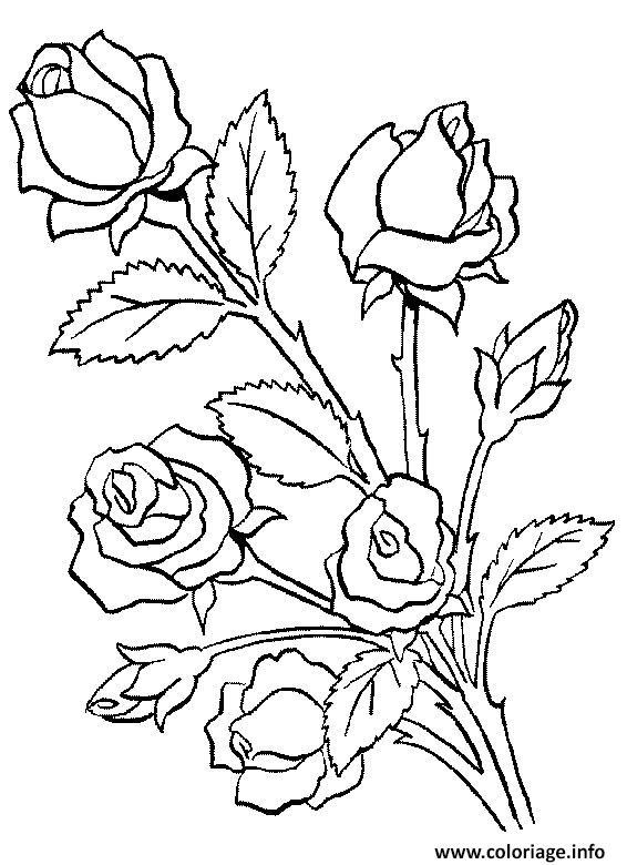 Coloriage Fleur Adulte Dessin