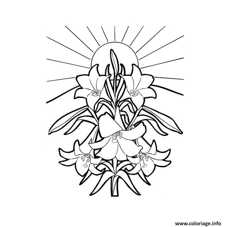 Coloriage fleur tropicale dessin - Coloriage de fleur ...