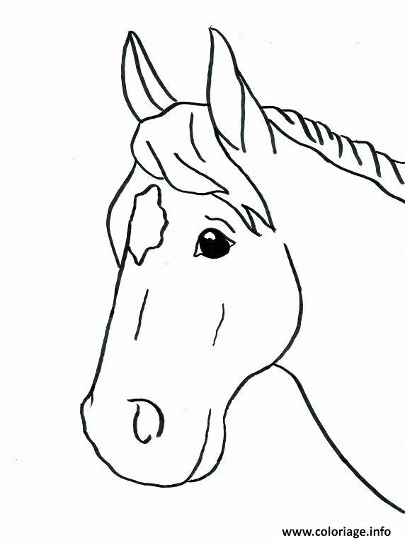 Coloriage Cheval Mignon.Coloriage Cheval Facile 46 Dessin