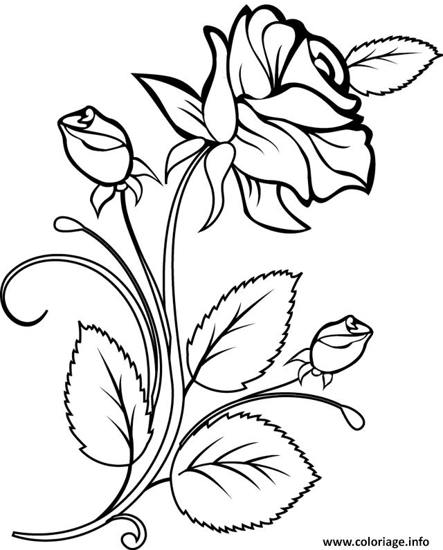 Coloriage rose et coeur 23 dessin - Coloriage d une rose ...