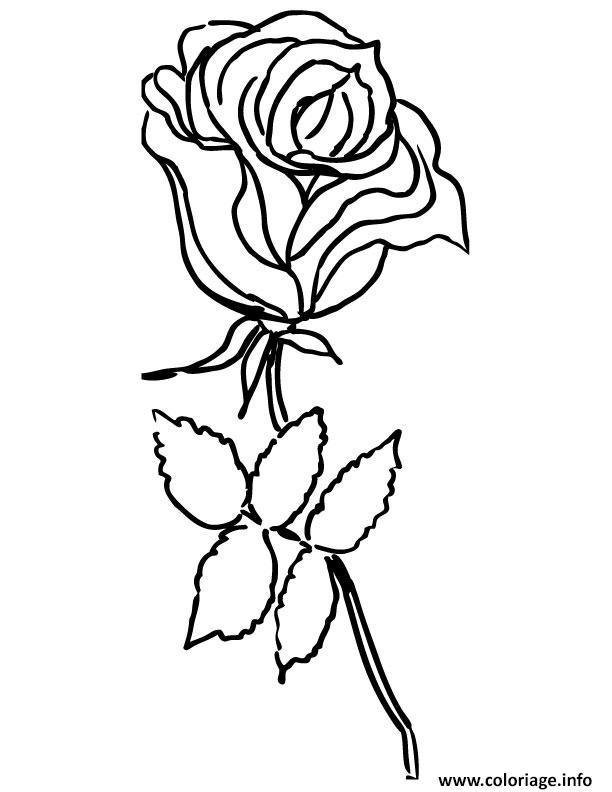 Coloriage Rose Simple Dessin