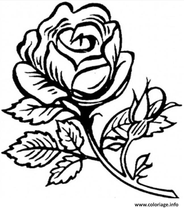 Souvent Coloriage Roses 34 dessin RX27