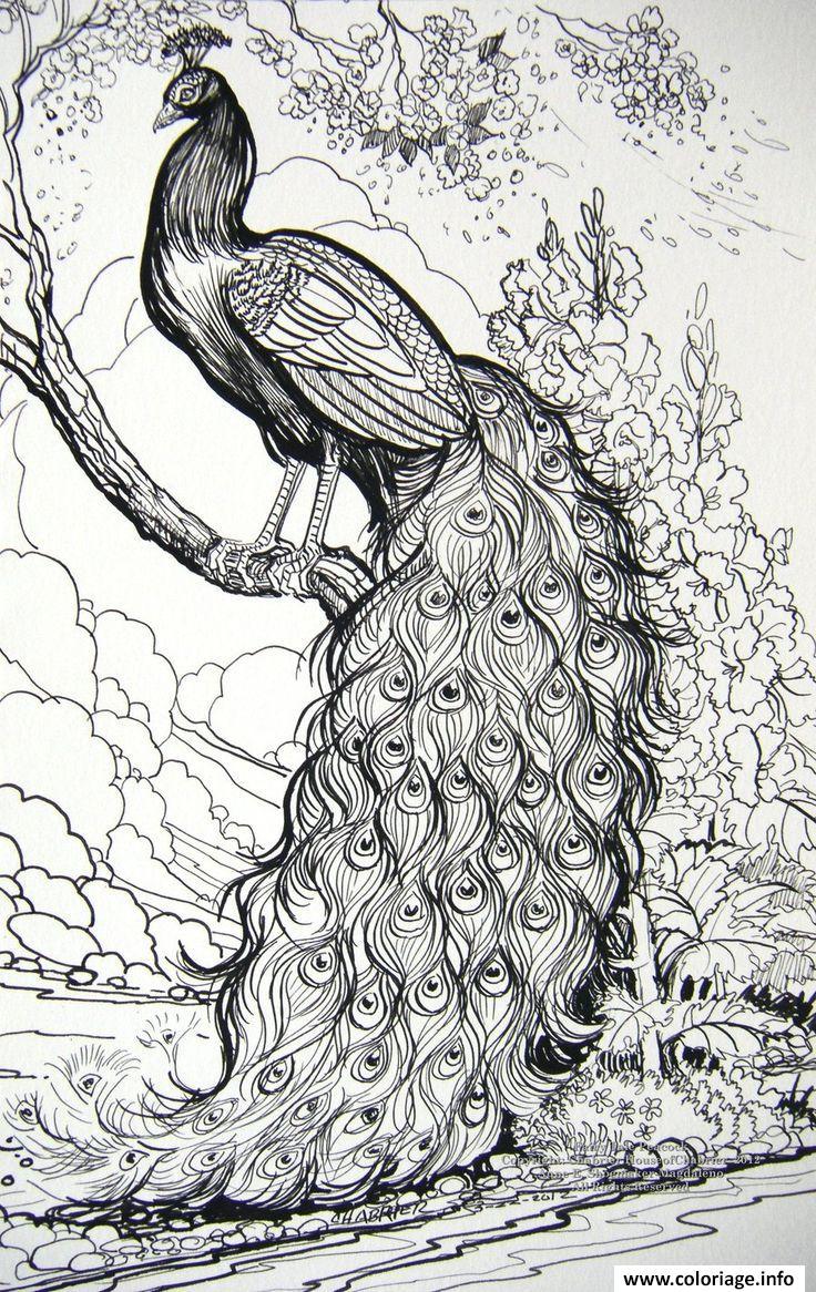 Dessin adulte Fairy Tale Peacock Coloriage Gratuit à Imprimer