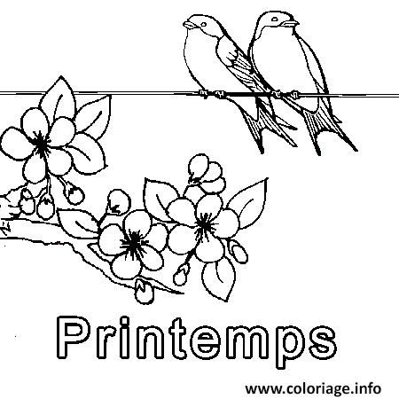 Coloriage Printemps Simple Oiseaux Dessin