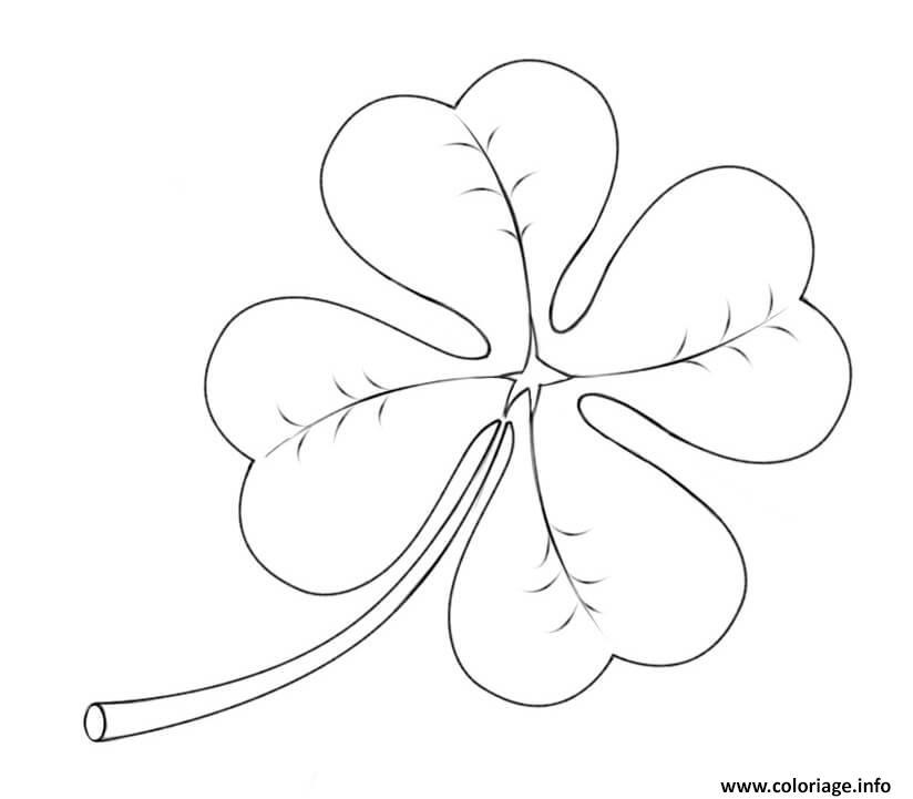 coloriage four leaf clover saint patricks day dessin