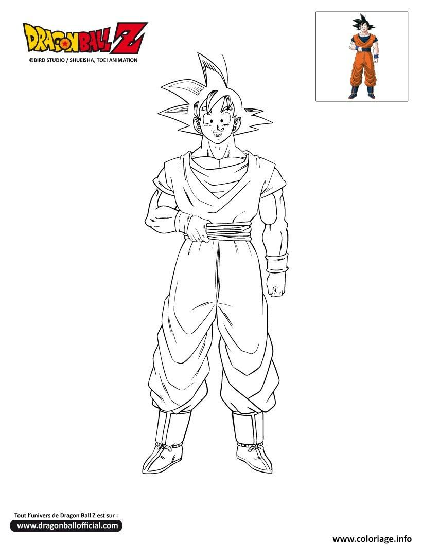 Coloriage Dbz Goku Dragon Ball Z Officiel Dessin