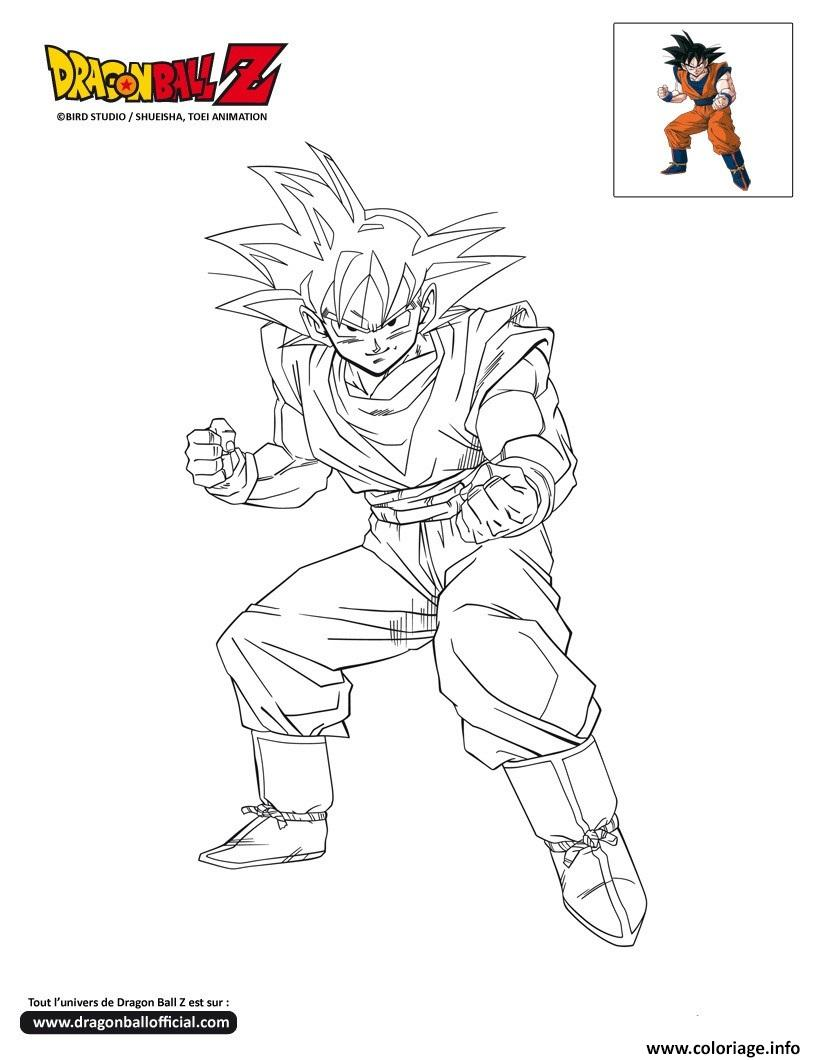 Coloriage Dbz Goku Pret Au Combat Dragon Ball Z Officiel Dessin