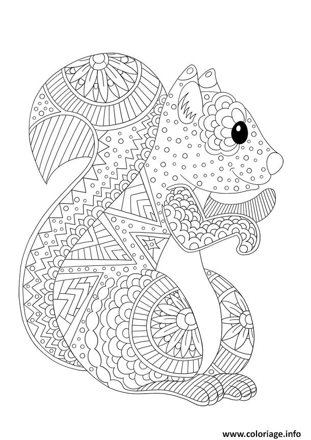 Coloriage ecureuil adulte animaux antistress dessin - Image anti stress ...