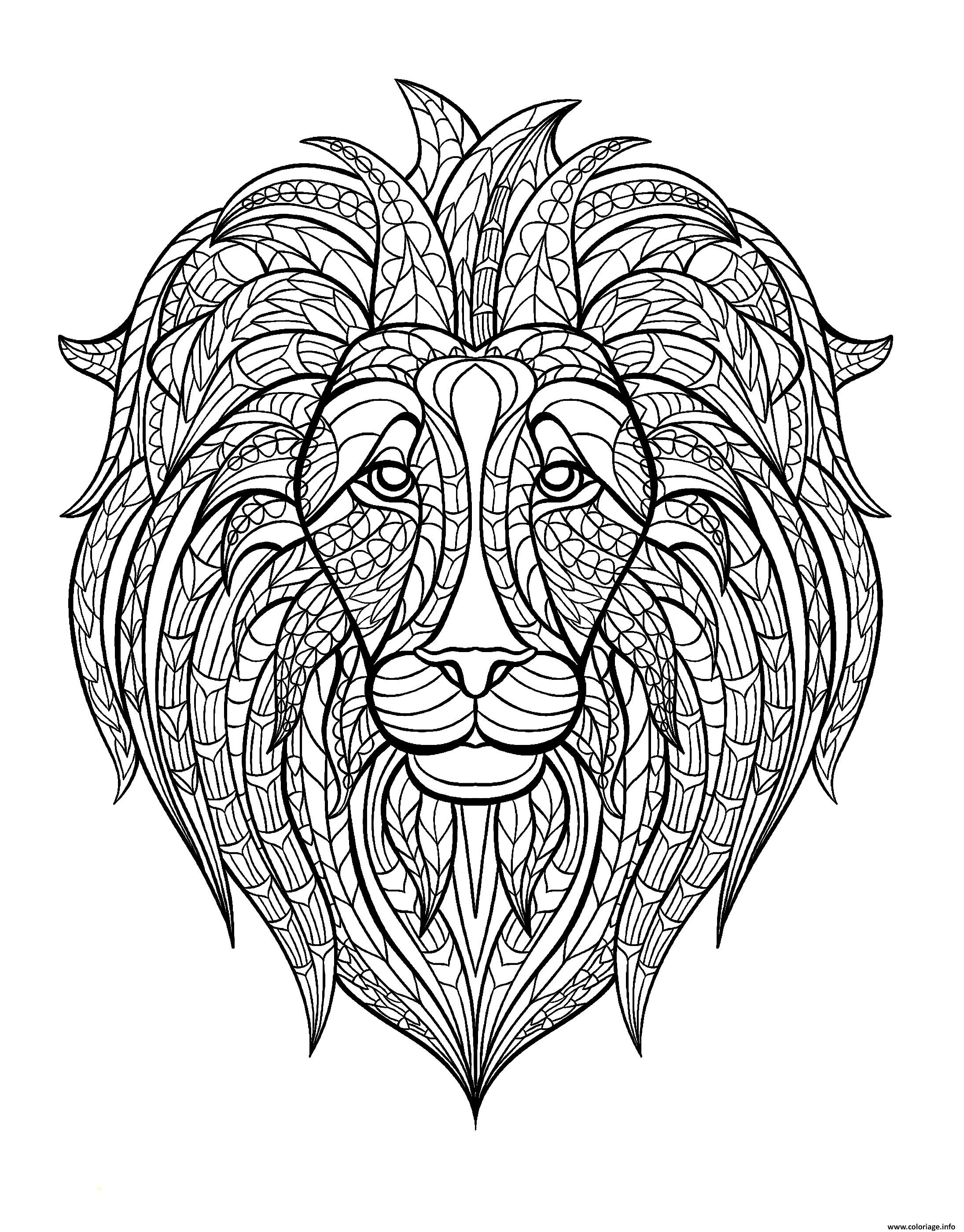 Coloriage Adulte Tete Lion Jecolorie Com