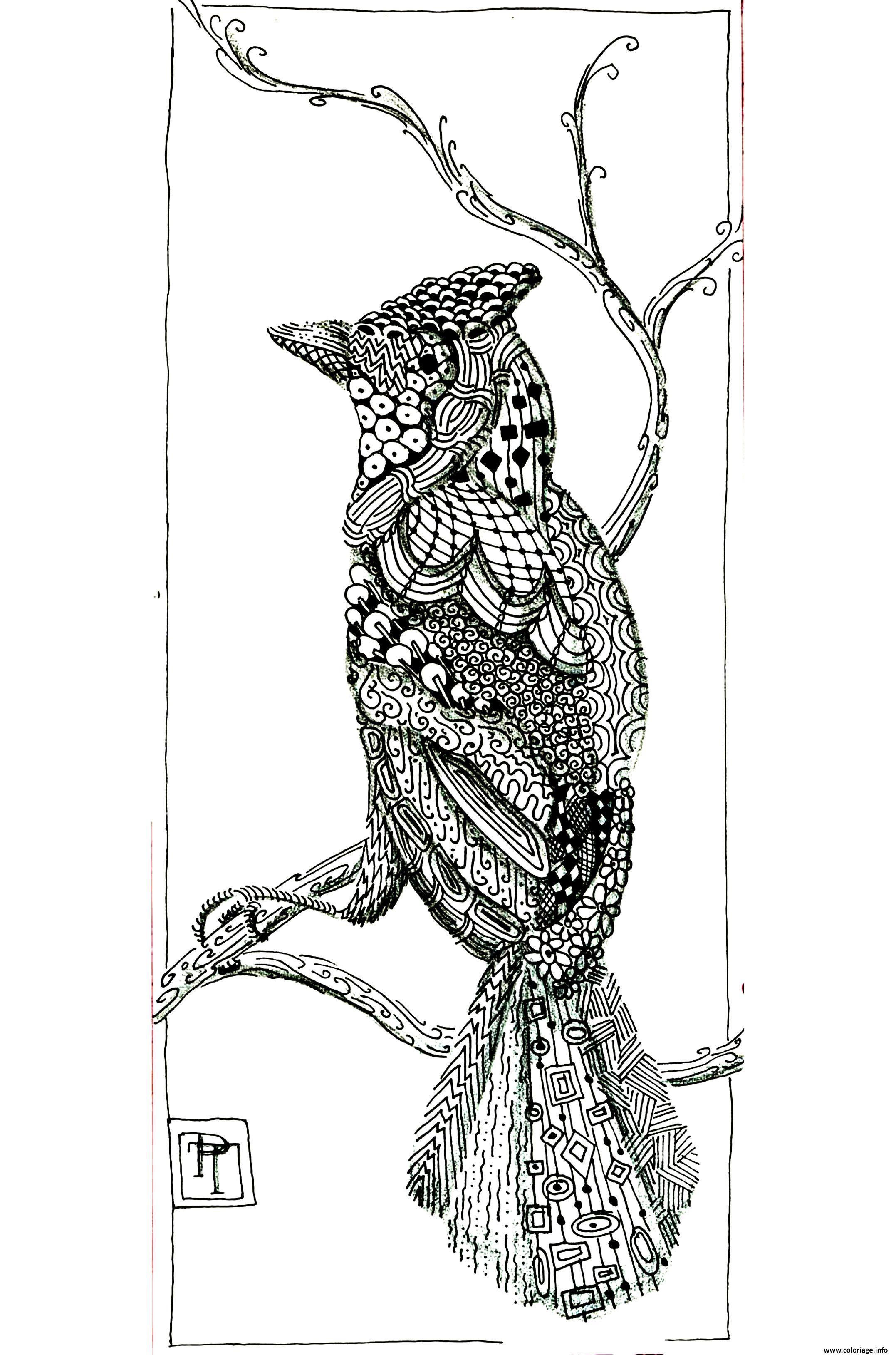 adulte animaux bel oiseau coloriage