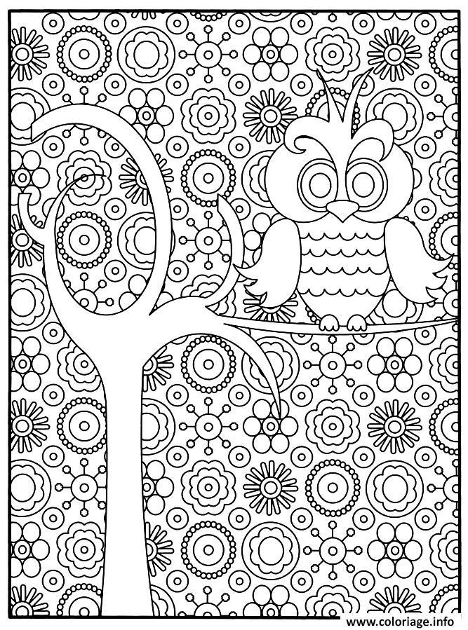 Coloriage adulte chouette - Chouette a dessiner ...