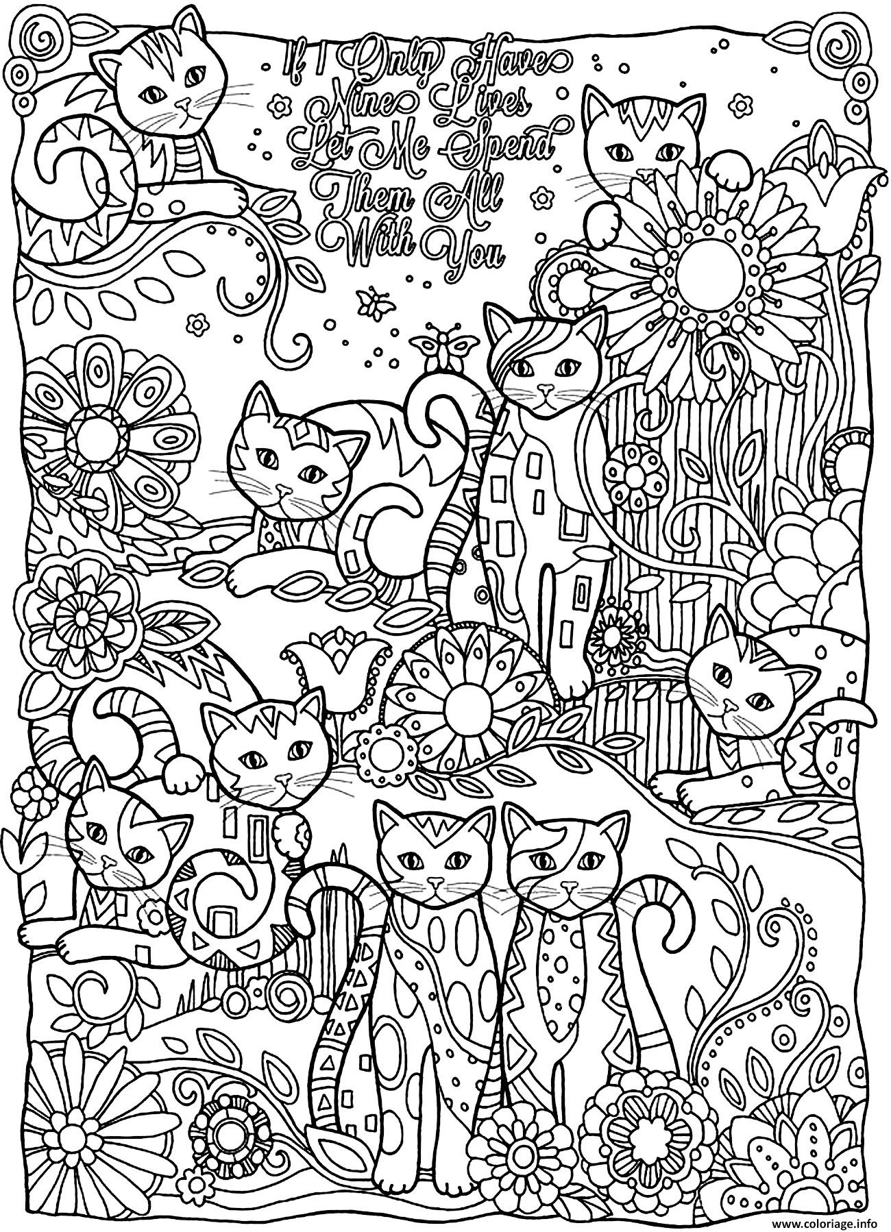 Coloriage Adulte Animaux Plein Chats Dessin
