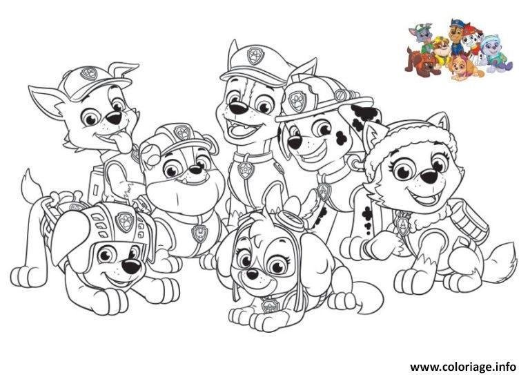 Coloriage pat patrouille paw patrol tous les chiens dessin - Pat patrouille coloriage ...